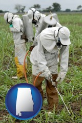 alabama workers spraying insecticide on plants