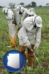 arizona workers spraying insecticide on plants