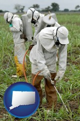 connecticut workers spraying insecticide on plants