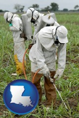 louisiana workers spraying insecticide on plants