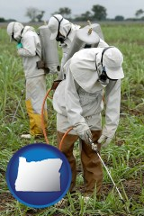 oregon workers spraying insecticide on plants