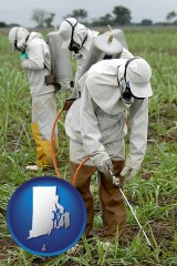 rhode-island workers spraying insecticide on plants