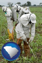 south-carolina workers spraying insecticide on plants
